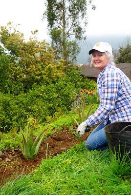 Susan gardening